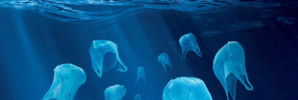 plastic bags and environment essay