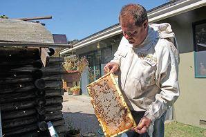 richard baxter bees