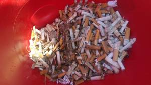 930 cigarette butts