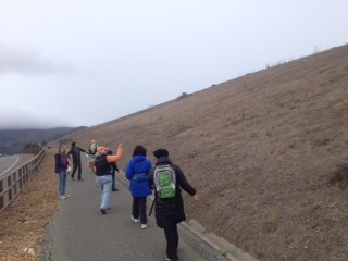 rockaway switchbacks habitat restoration3