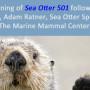 poster sea otter 501