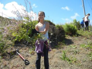 Girl Scout Troop east bay habitat restoration