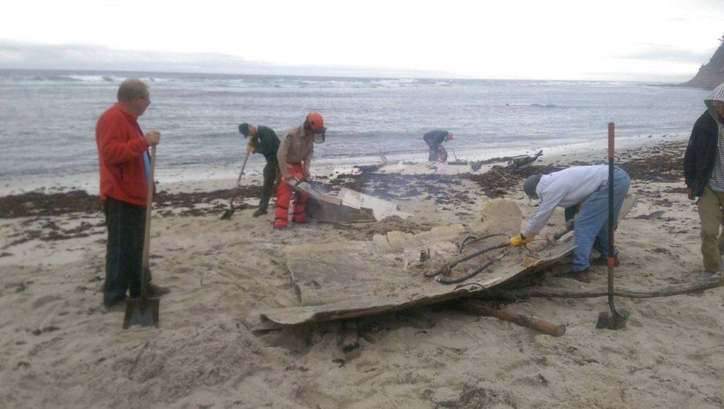 cutting boat moss beach