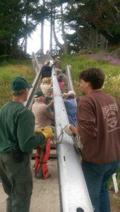 moss beach mast sailing boat