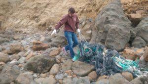 rope and net moss beach