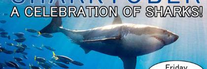 pac_sharks_flyer_final
