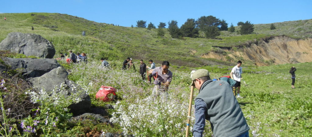 switchbacks habitat restoration